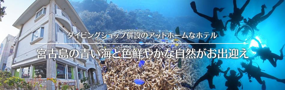 ダイビングショップ併設のアットホームなホテル 宮古島の青い海と色鮮やかな自然がお出迎え