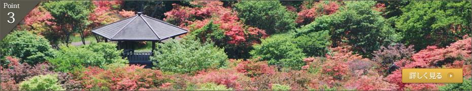 春は鮮やかなピンクに染まる恵山